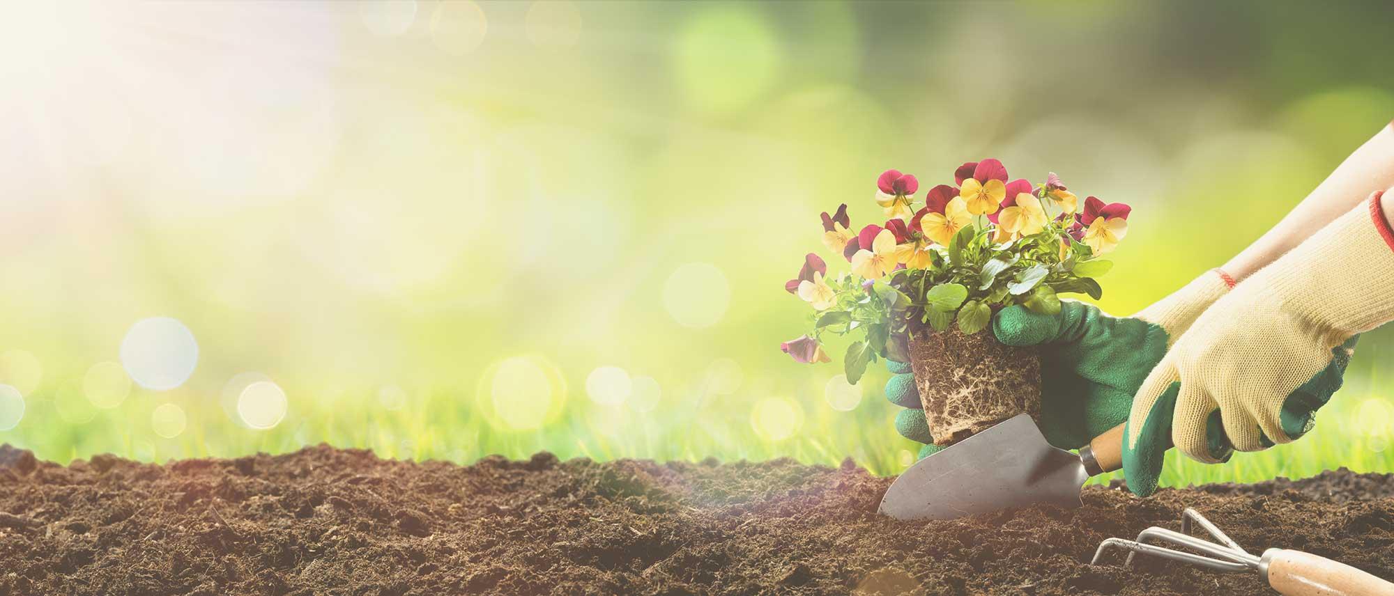 Gardening-644727100